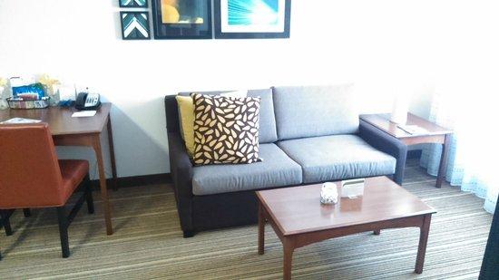 Residence Inn Princeton at Carnegie Center: sofa in room