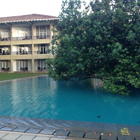 Heritance Ahungalla: Tree pool