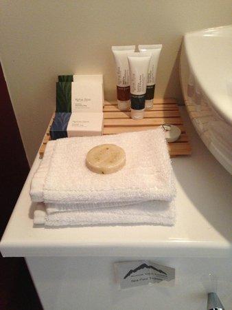 Alpine View Lodge: Bathroom amenities