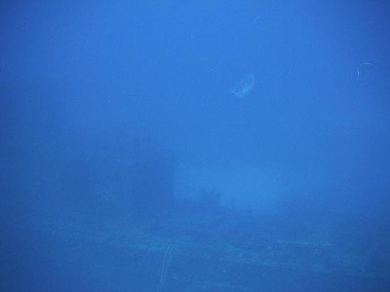 Couples Sans Souci: Snorkel Trip - ship wreck