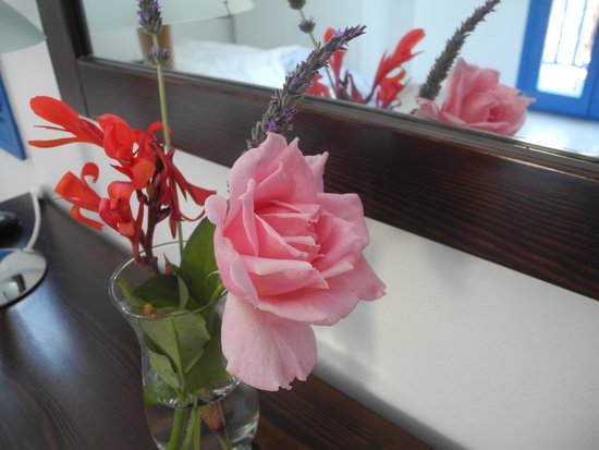 Hotel Minoa: Flowers in our room