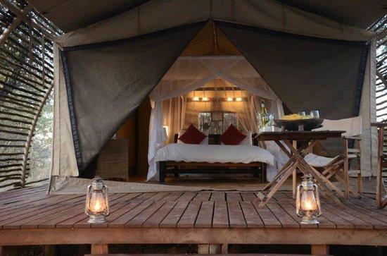 Haina Kalahari Lodge : tented rooms.