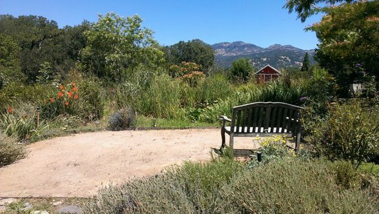 Meadowlark Country House: Lot's of quiet places to reflect, read, or just relax