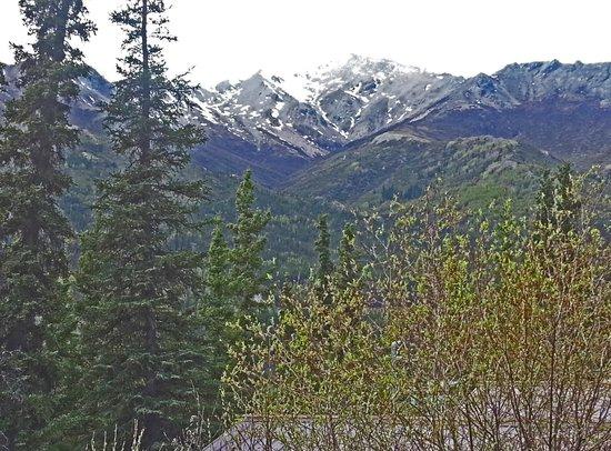 Denali Crow's Nest Cabins: View of the Alaska Range