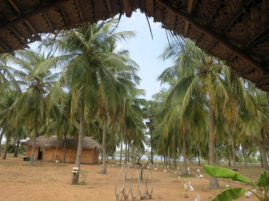 Ruuk Village: view from our cabana