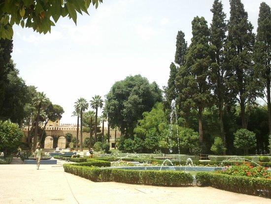 Jardin Jnan Sbil - June 2014