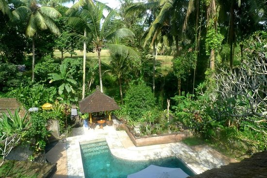Kebun Indah : Pool House view