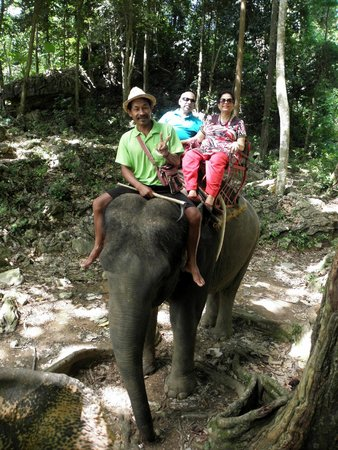 Nosey Parker's Elephant Camp - Private Day Tours : Sitting comfortably on the elephant
