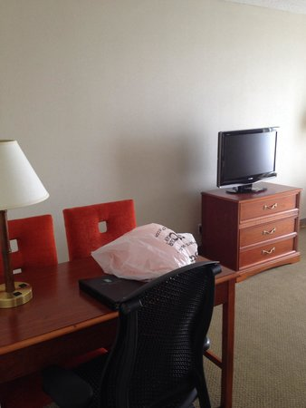 Embassy Suites by Hilton Tampa - Airport/Westshore: Desk