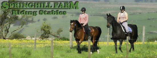 Springhill Farm Riding Stables: Header
