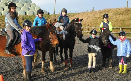 Springhill Farm Riding Stables: Pony morning