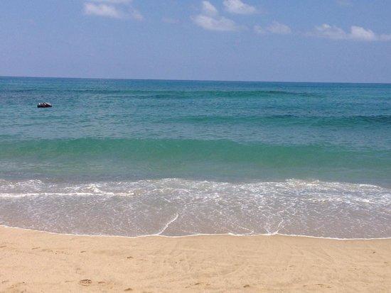 spiaggia delle saline - Foto di Le Terrazze Residence, Palinuro ...