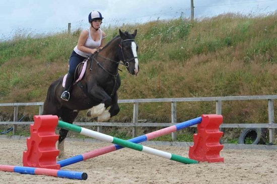Springhill Farm Riding Stables: Jumping