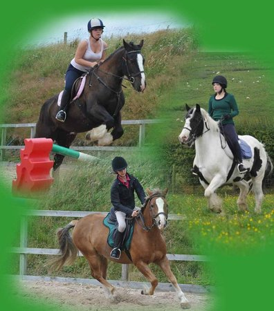 Springhill Farm Riding Stables: General lessons