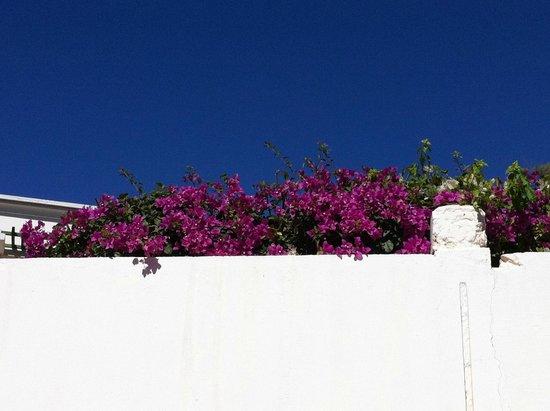Caribbean Village Agador: strada per la spiaggia