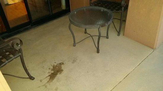 The Westin Lake Las Vegas Resort & Spa : Patio stain outside my room