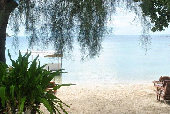 Amari Koh Samui: View from beach