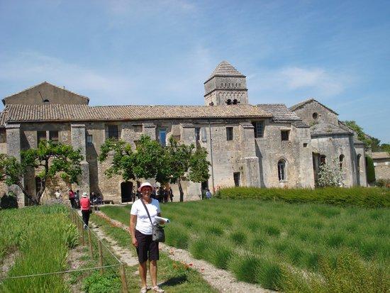 Saint-Paul de Mausole : The garden in the hospital, St Remy