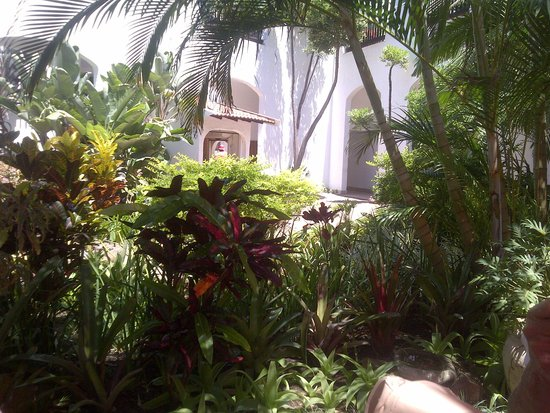Umhlanga Main Beach : Beautiful gardens all over.