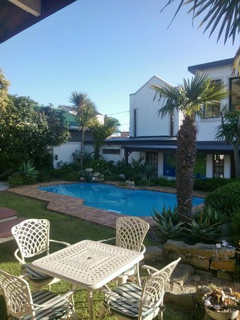 Mossel Bay Backpackers: Pool and garden