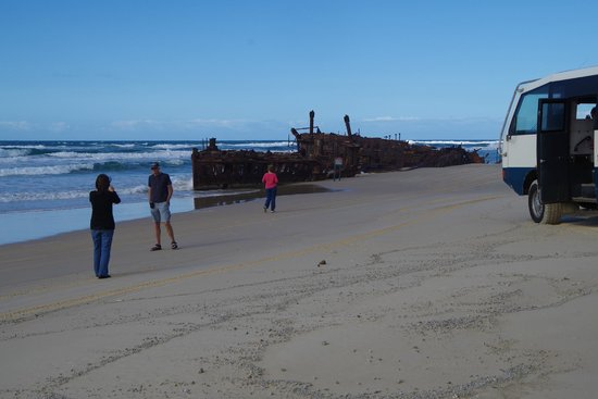 Fraser Experience Tours: Maheno wreck