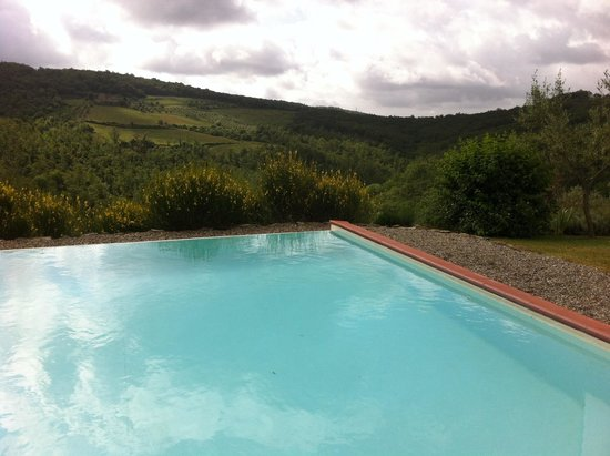 Fattoria Tregole: Swimming pool
