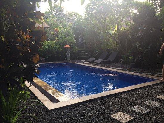 Tropical Bali Hotel: Piscine