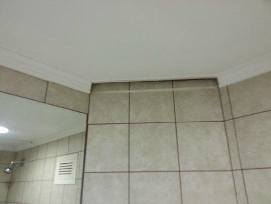 Leonardo Club Dead Sea Hotel : Missing parts of the ceiling in the bathroom
