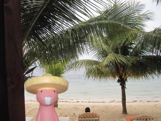 Ramon's Village Resort : Alejandro at Ramon's in Ambergris Caye
