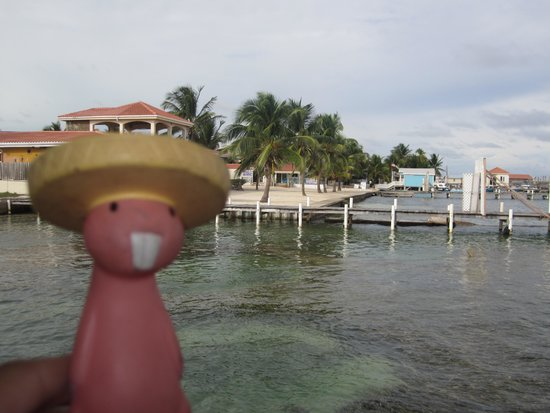 Ramon's Village Resort : Alejandro in Ambergris Caye