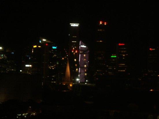 Carlton Hotel Singapore: 遠くに見えるビル群