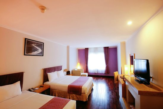 TTC Hotel Premium - Ngoc Lan: Superior city view