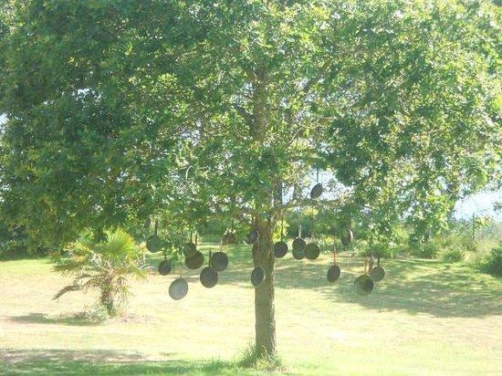 auberge de bel air : un arbre a poele: idee du proprietaire