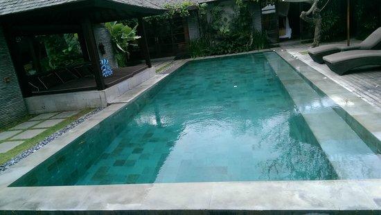 Peppers Seminyak : The pool