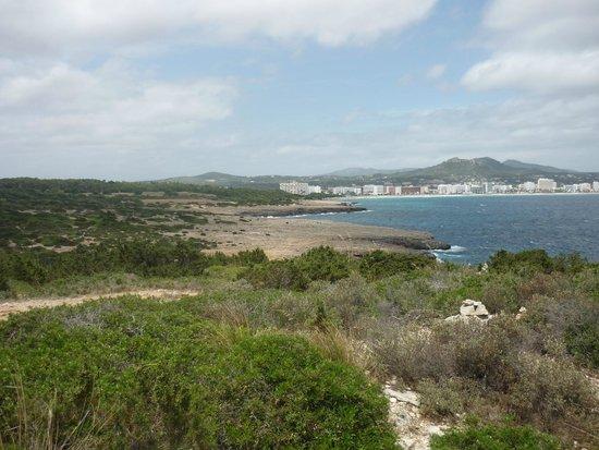 Playa Moreia Apartments : пейзажи рядом с отелем