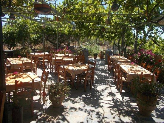 Apokoronas, Greece: To Yaladiko