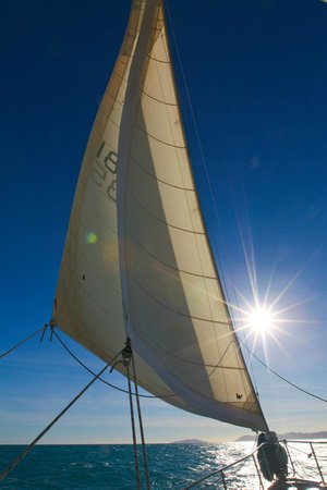 Tallship Adventures-Derwent Hunter Day Tours: Simply a beautiful day to be on the water