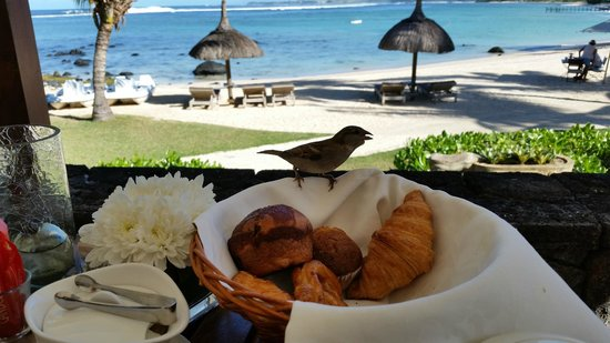Shanti Maurice - A Nira Resort: Breakfast