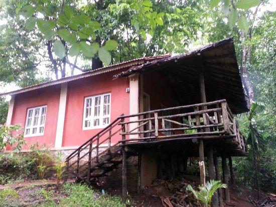 Hornbill River Resort: Our Cottage
