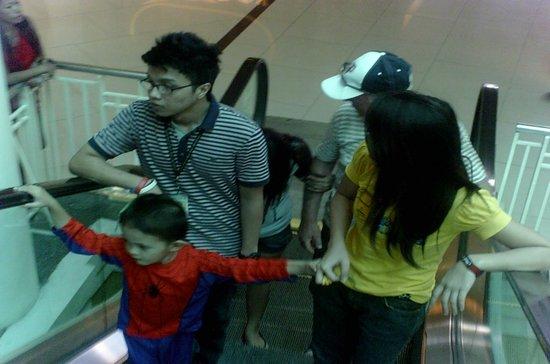Ayala Center Cebu: One of the many escalators