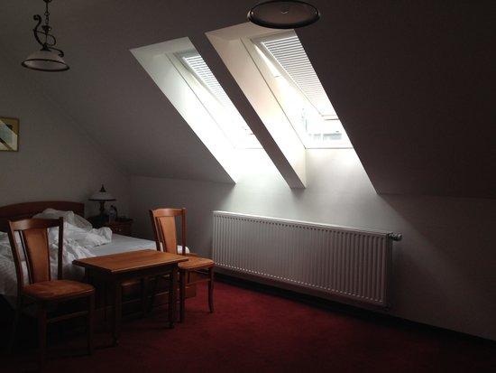 Hotel Pegas Brno: Attic Room