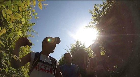 Running Tours Prague: Running through Prague's Gardens