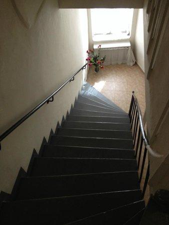 Finch Apartments: Лестница крутая
