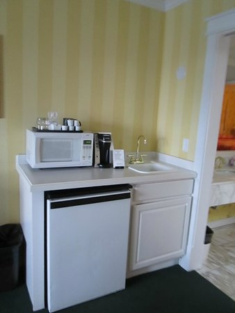 Lilac Tree Suites & Spa: mini bar area located in living portion of suite