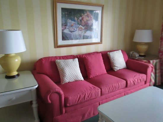 Lilac Tree Suites & Spa: couch located across from TV in living section of suite.
