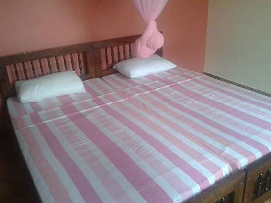 McLeod Inn: Room