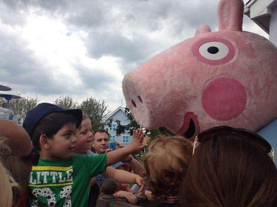 Paultons Park: Piggys