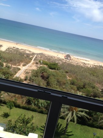 Hotel Playas de Guardamar : View from the room