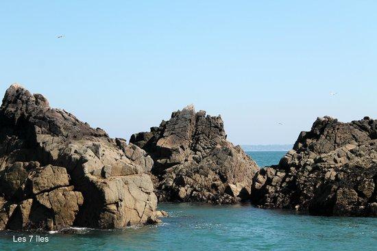 Reserve Naturelle des Sept Iles: L'une des 7 îles