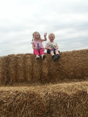Thornton Hall Farm Country Park: my little ones on the haystack